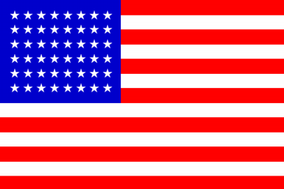 USA Printed Flag