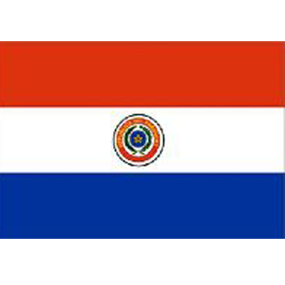 Paraguay Sewn Flag