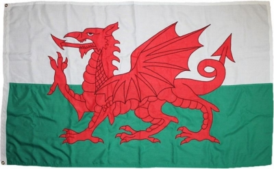 Welsh Dragon Flag Sewn